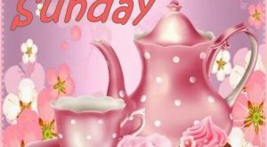 Have a Lovely Sunday sunday sunday gif sunday blessings sunday wishes sunday greetings sun...