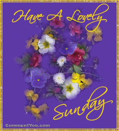Have a lovely Sunday flowers sunday graphic happy sunday sunday greeting lovely sunday