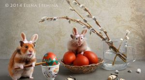 spring Tale by Elena Eremina on px
