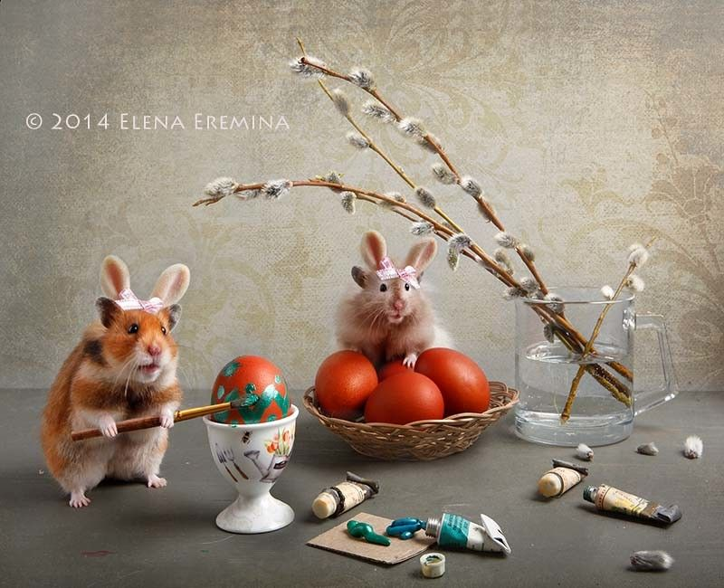 spring Tale by Elena Eremina on 500px