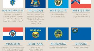 flags of the United States Infographic