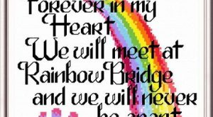 Lets Cross the Rainbow Bridge – cross stitch pattern designed by Ursula Michael. Category:…