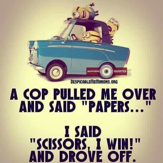 66 Newest Funny Minion Quotes and Pictures Of The Week