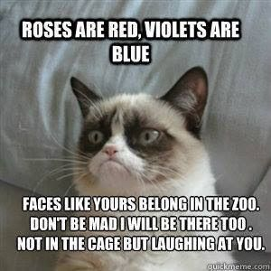 She is good at rhyming | Community Post:  Hilarious Grumpy Cat Memes That…