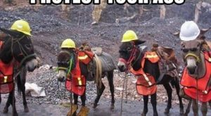 "#Industrial search Pinterest"" #Industrial Safety First! :)"