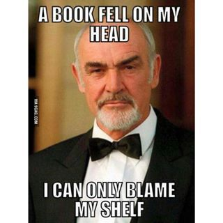A book fell on my head. I can only blame my shelf