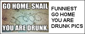 Funniest Go Home You Are Drunk Photos