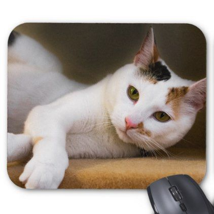 Cute Relaxing White Calico Cat Mouse Pad – animal gift ideas animals and pets…