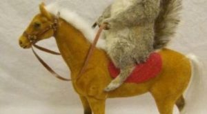 a squirrel on a toy horse with funny caption