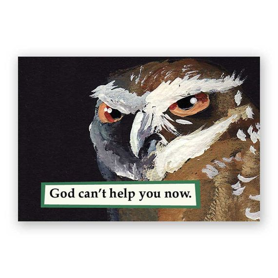 God Can't Help You Now Magnet – Owl – Bird – Humor – Mincing…