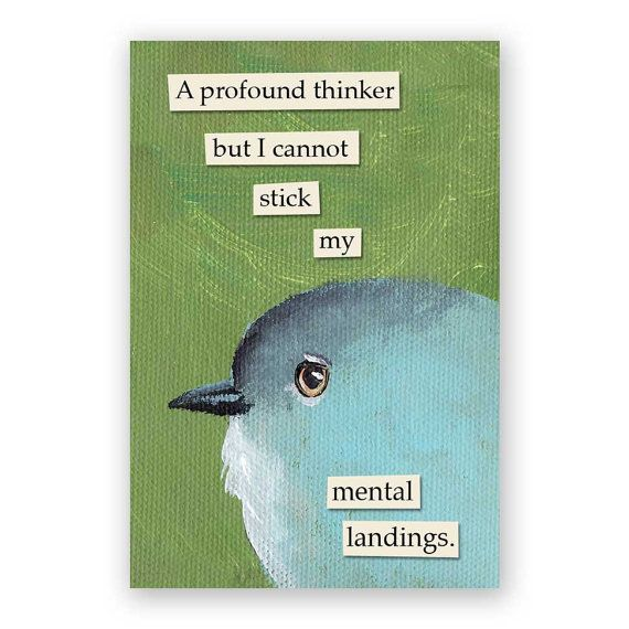 Profound Thinker Magnet – Bird – Humor – Gift – Mincing Mockingbird – Stocking…