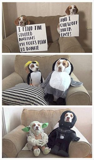 Funny Pictures Of The Day & #8211; 83 Pics