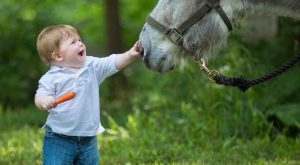 Casey Leavelle ~ Only Donkeys – My baby is turning ! I had to…