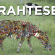 """Sometimes a bicycle is called a """"Drahtesel"""" in Germany, which means """"wire donkey."""" 