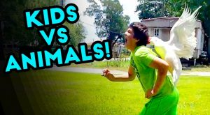 KIDS VS ANIMALS | Epic Fails Funny Videos Compilation | JULY