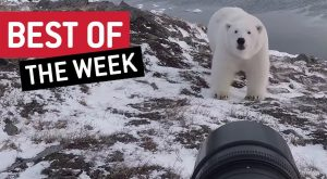 Best of the Week | Farmnado!