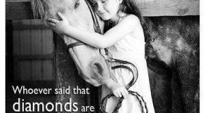 Never owned a horse, but I'd take one over a diamond ANY DAY!