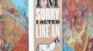 I'm Sorry I Acted Like An Ass (SOR-01) Donkey Funny Sympathy Apology My Bad…