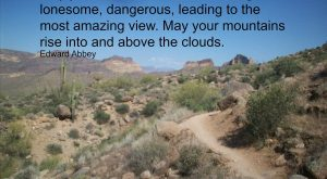 "Mountain Bike trail love. Great quote from Edward Abbey. #mountainBikeInspiration ""> #mountainBikeInspiration"