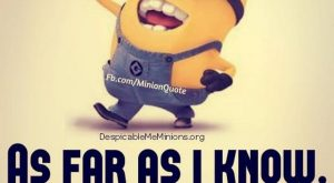 Lol funny Minions captions