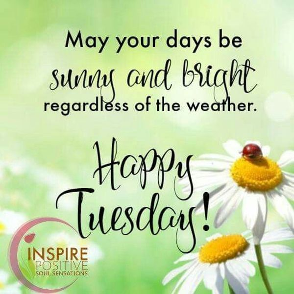 Image result for happy tuesday images and quotes