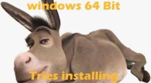 Our cool donkey meme! Technology, Software and