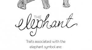 elephant line art card