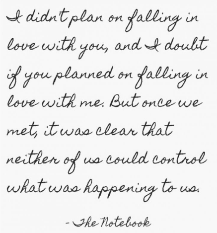 i-didnt-plan-on-falling-in-love-with-you-neither-of-us-could-control-what-was-happening-to-us