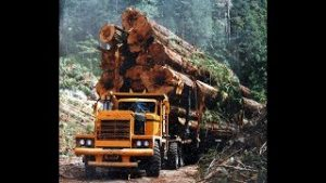Best-Logging-Truck-Drivers-Skills-Heavy-Machines-Big-Trucks