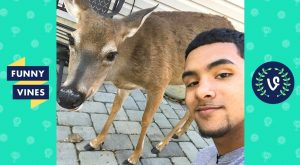 """TRY NOT TO LAUGH – Cold Game Kelv """"Brother Nature"""" 