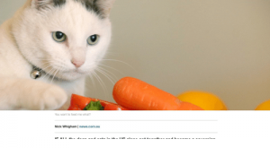 Facepalm, News, and Vegan: Is it a terrible idea to make your pet a vegan?  APRIL 09, 2018 8:30 PM  You want to feed me what?  Nick Whigham | news.com.au