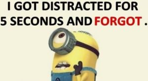 Best Funny Minion Quote