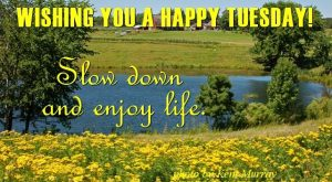 Happy Tuesday Funny Morning Quotes. QuotesGram by QuotesGram