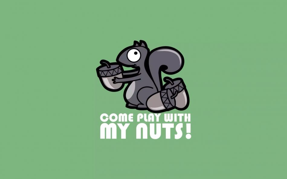 "#nuts ""> #nuts, #minimalism ""> #minimalism, #squirrel ""> #squirrel, #humor explore…"