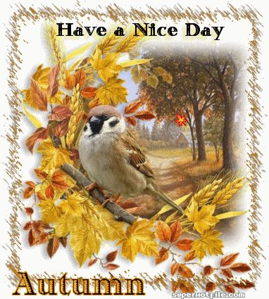 Have a Nice Day Autumn animated autumn leaves fall gif fall greeting autumn greeting