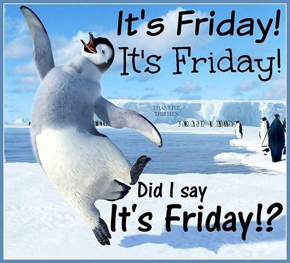 Did i say it\'s friday!? friday friday quotes its friday ...