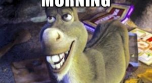 shrek donkey quotes – Google zoeken –