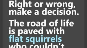 It's Time to Laugh! This quote about flat squirrels is hilarious. For more funnies,…