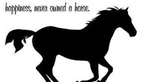 Horse-Quote-Horse decal-Vinyl wall sticker-Horse sticker-32 X 22 inches