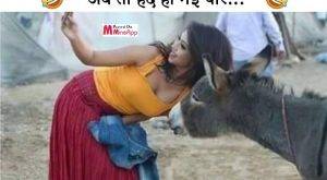 hindi funny quotes, funny hindi quotes, funny quotes in hindi, funny quotes, selfie with…