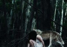 wolf and girl