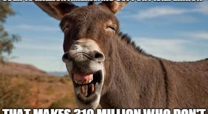 Funny Donkey Caption