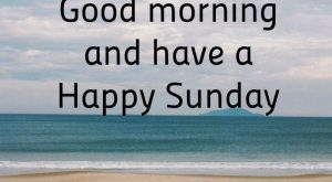 Funny Sunday Quotes 088 1