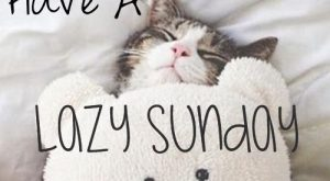 Funny Sunday Quotes 129
