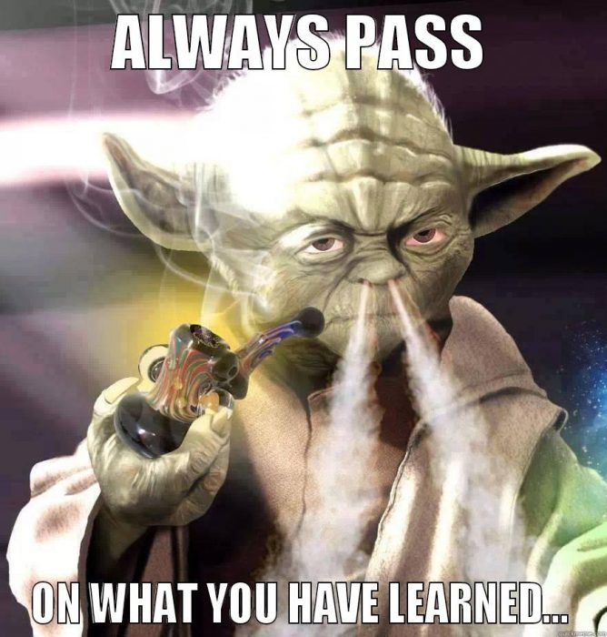 Funny Yoda Quotes – Fit for Fun