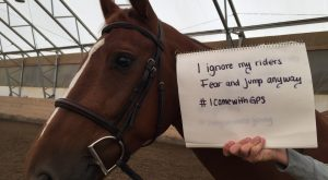 #x2764;濾 Horse Shaming at its Best 003