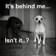 It´s behind me…