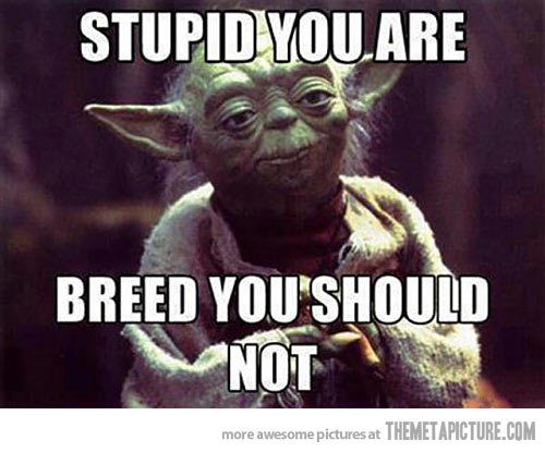 funny Yoda quote breed