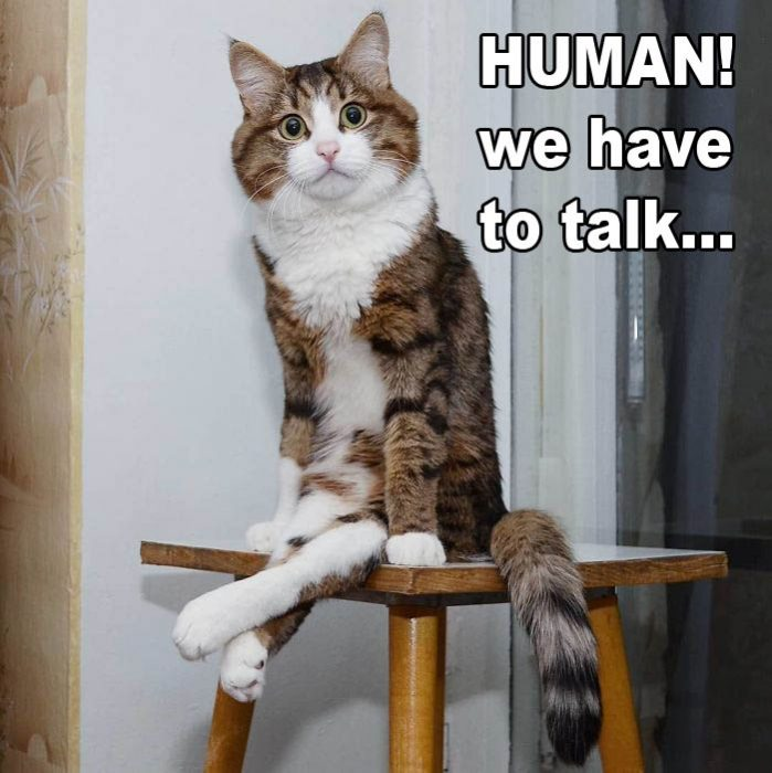 human_we_have_to_talk