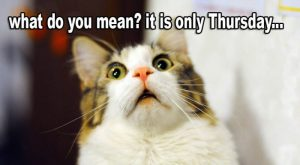 It´s only Thursday… 😆🤣😄😂